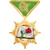 """медаль """"Золотой фолиант"""""""