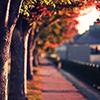 photo-6169.jpg?_r=1564951153