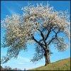 photo-6212.jpg?_r=1565980770